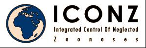 ICONZ logo